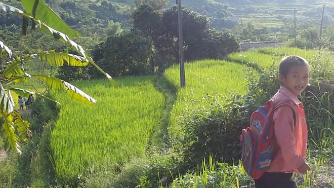 """Ngỡ ngàng """"Sa Pa ở Quảng Ninh"""" - 9"""