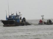 Tin tức trong ngày - Cứu sống 4 ngư dân bị chìm tàu trên biển