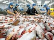 Thị trường - Tiêu dùng - Cá tra Việt vẫn chịu thuế chống bán phá giá