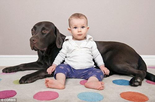 Nuôi chó tốt cho sức khỏe con bạn - 1