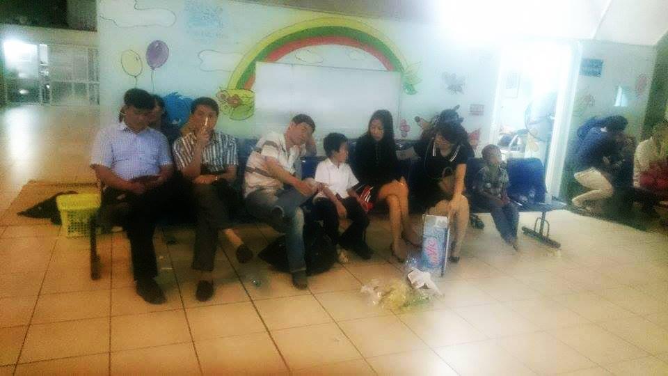 Hà Nội: 51 học sinh tiểu học nhập viện do bị ong đốt - 1