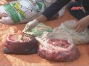 """Video An ninh - Rợn người 700 kg nội tạng thối suýt """"lạc"""" lên mâm"""