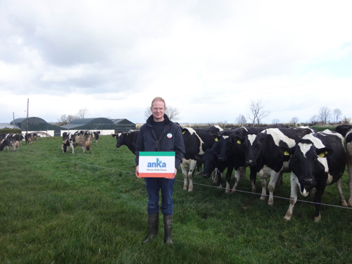 Một ngày ở trang trại những cô bò hạnh phúc - 3