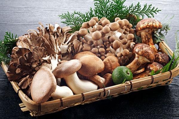 Những loại nấm tuyệt đối không nên ăn - 2