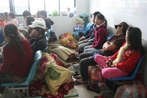 Đà Nẵng: Báo động dịch sốt xuất huyết và tay-chân-miệng - 1