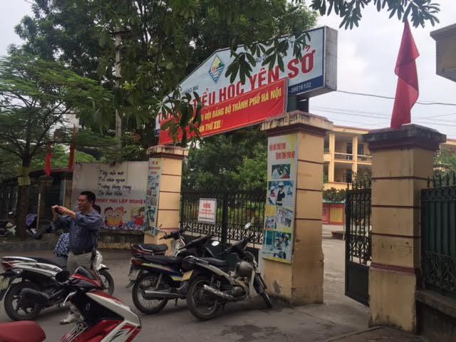 Ong đốt hơn 50 HS tiểu học ở Hà Nội thuộc loại gì? - 2