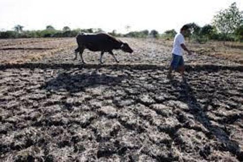 Lo ngại nhiều nước xây hồ chứa sẽ ảnh hưởng đến VN - 1