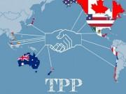 Thị trường - Tiêu dùng - Công bố toàn văn Hiệp định đối tác xuyên Thái Bình Dương (TPP)