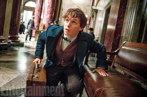 """Fan Harry Potter """"đứng ngồi không yên"""" vì phần phim mới - 6"""