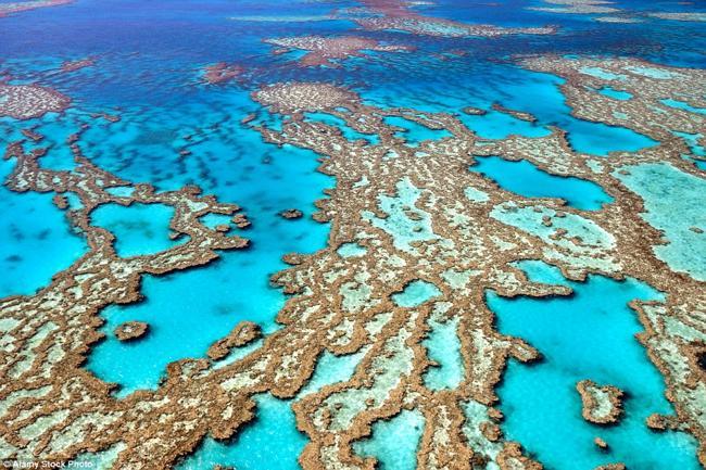 Rặng san hô Great Barrier Reef ở Australia là rặng san hô lớn nhất thế giới, bao gồm khoảng 3.000 tảng đá ngầm, 900 hòn đảo và các loài sinh vật biển đa dạng. Theo các nhà khoa học, nơi này có thể biến mất trong năm 2050 do biến đổi khí hậu.