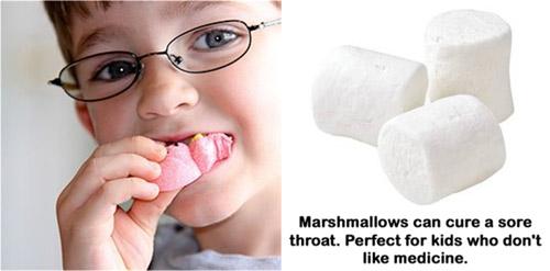 Kẹo Marshmallow món ăn vặt bổ dưỡng - 3