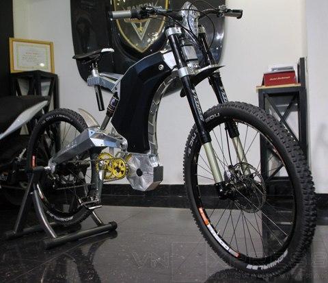 8 loại xe đạp đắt đỏ nhất Việt Nam - 1