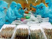 Tài chính - Bất động sản - Việt Nam được lợi 25 tỷ USD ngay khi TPP có hiệu lực