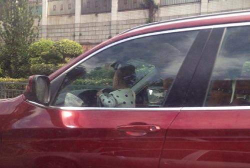 Dân mạng phẫn nộ khi bố cho bé trai 2 tuổi lái ô tô BMW - 1