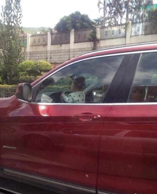 Dân mạng phẫn nộ khi bố cho bé trai 2 tuổi lái ô tô BMW - 2