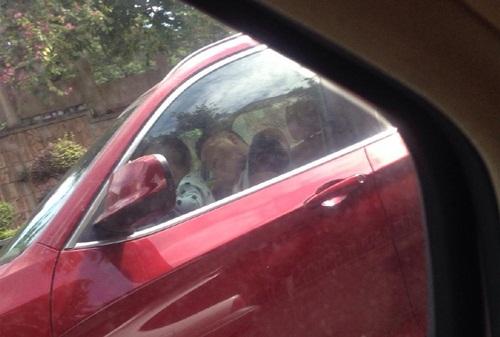 Dân mạng phẫn nộ khi bố cho bé trai 2 tuổi lái ô tô BMW - 3