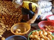 Thị trường - Tiêu dùng - Đà Lạt lại cho khoai tây Trung Quốc vào chợ