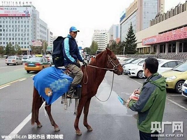 TQ: Dùng ngựa giao hàng online - 1