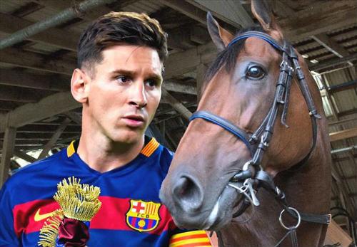 Messi tranh giải thưởng thể thao với… ngựa - 1