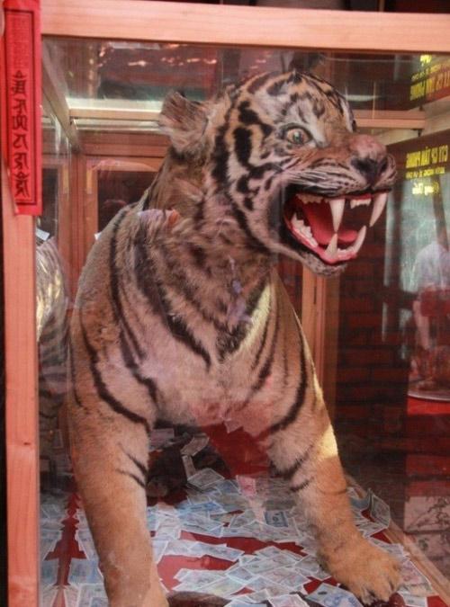 Ngắm đền thờ Tổ nghiệp trăm tỷ của Hoài Linh, Vượng Râu - 10