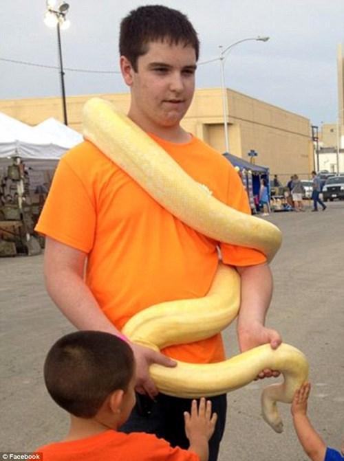 Thanh niên yêu động vật ngồi yên để rắn độc cắn đến chết - 3