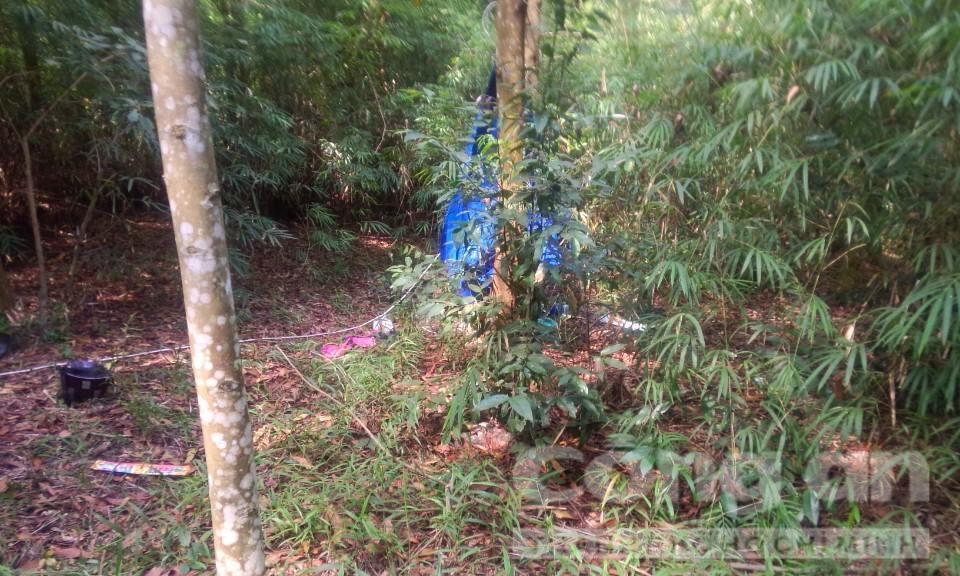 Vụ 2 mẹ con bị giết ở Bình Dương: Nghi can đã tự tử - 1