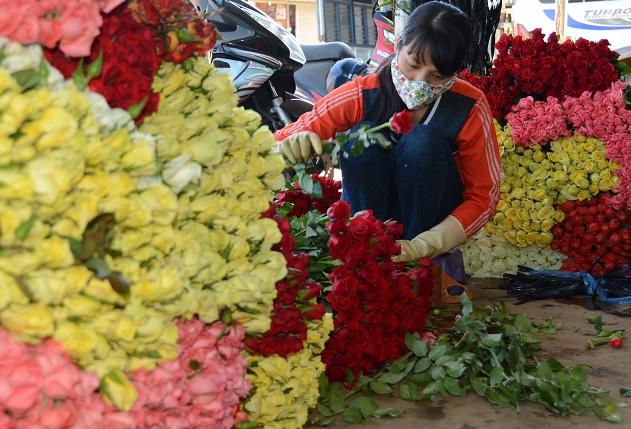 Hoa Đà Lạt tăng giá 3 lần dịp lễ 20.11 - 1