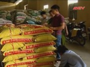 Video An ninh - Thức ăn chăn nuôi chứa chất gây ung thư vượt 75 lần