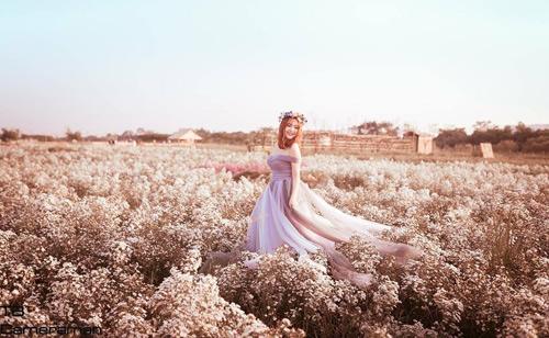 Nữ sinh mơ màng giữa cánh đồng lưu ly tuyệt đẹp - 9