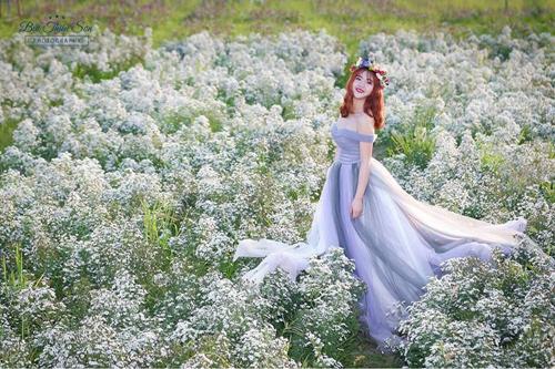 Nữ sinh mơ màng giữa cánh đồng lưu ly tuyệt đẹp - 10