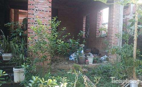 Biệt thự tiền tỉ bỏ hoang, cây cỏ dại mọc um tùm - 7