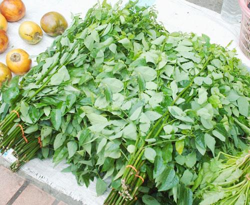 Những ai không nên ăn rau muống, rau ngót và rau dền? - 2
