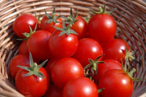5 điều tuyệt đối cấm kỵ khi ăn và chế biến cà chua - 1
