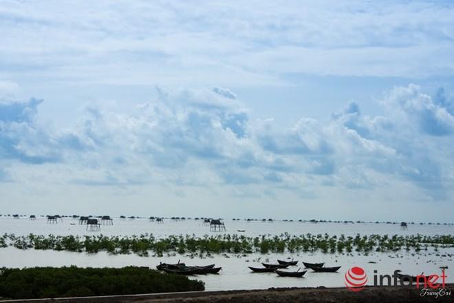 Đồng Châu, Cồn Vành đẹp hoang sơ mùa gió lạnh - 3
