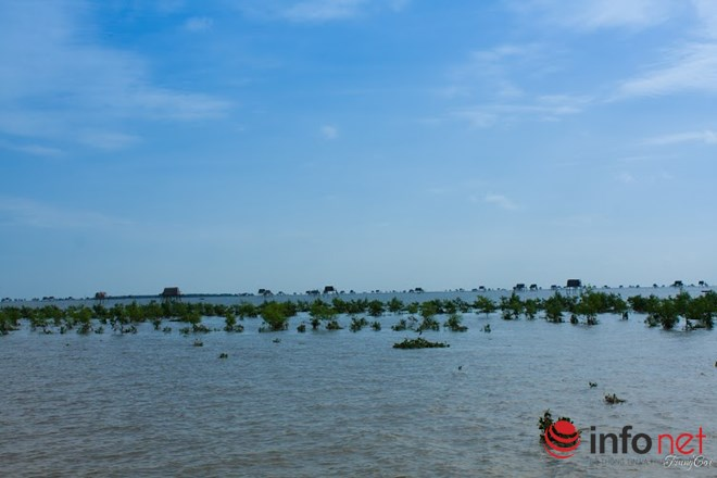 Đồng Châu, Cồn Vành đẹp hoang sơ mùa gió lạnh - 4