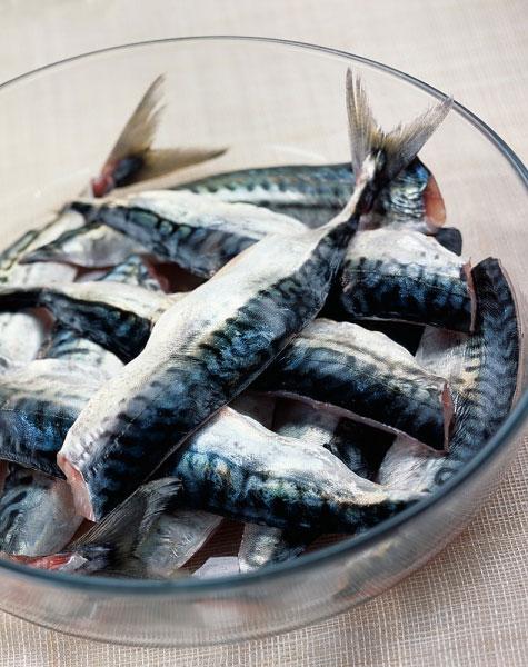 """5 loại cá """"cấm chỉ"""" phụ nữ mang thai được ăn - 1"""