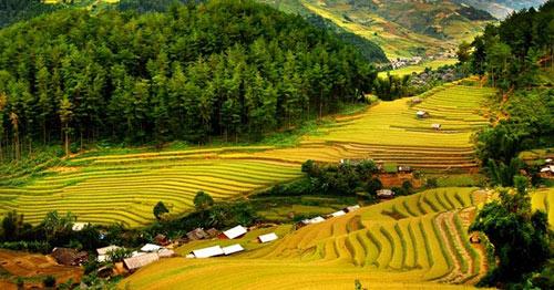 Việt Nam lọt top 6 quốc gia an toàn cho du khách - 1