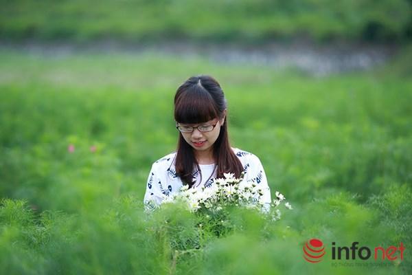 Cận cảnh vườn hoa tam giác mạch giữa lòng Hà Nội - 8