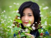 Du lịch - Cận cảnh vườn hoa tam giác mạch giữa lòng Hà Nội
