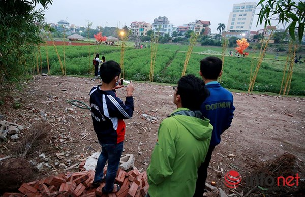 Vườn tam giác mạch giữa Thủ đô phải đóng cửa - 11
