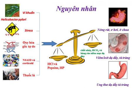 Xóa tan nỗi khổ cho người đau dạ dày bằng Nano Curcumin cải tiến? - 2
