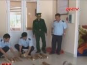 Video An ninh - Khởi tố vụ buôn lậu gần 3 tấn ngà voi, vẩy tê tê