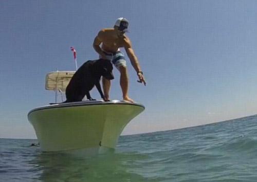Clip: Phát sốt với chú chó biết lặn xuống biển bắt tôm - 1