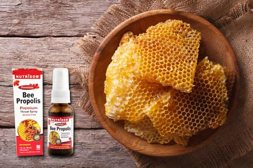 Đừng mua thuốc, hãy nuôi ong - 3