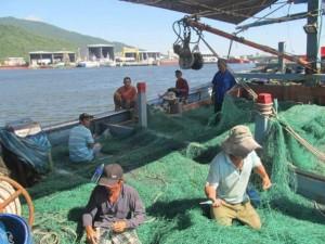 Tin tức trong ngày - Đà Nẵng xác minh thiệt hại hàng loạt tàu cá bị tàu TQ quấy phá