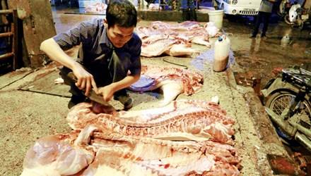 Điều tra đường dây thức ăn chăn nuôi chứa chất cấm - 1