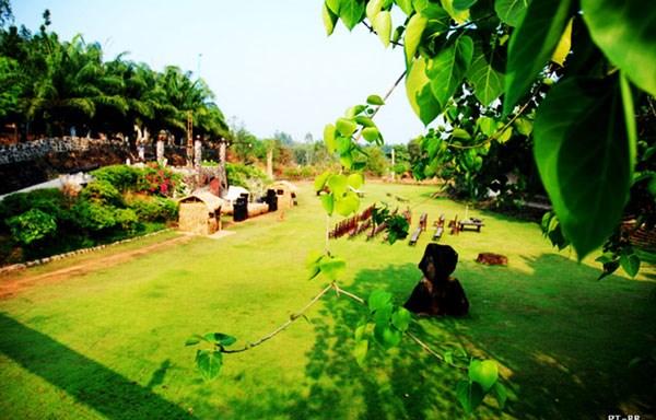 """Gợi ý 5 địa điểm dã ngoại """"mới toanh"""" gần Sài Gòn - 1"""