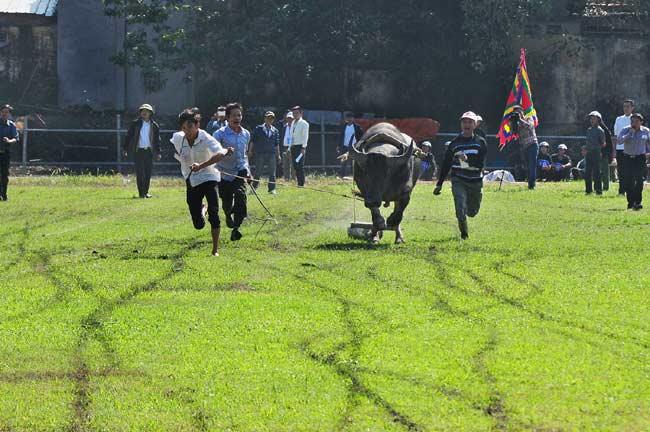 Ảnh: Khoảnh khắc chiến thắng của những nài ngựa nông dân - 15
