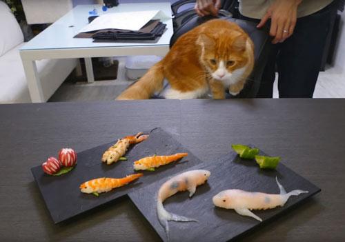 Cách làm Sushi hình con cá đánh lừa được cả mèo - 13