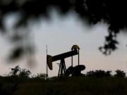Thị trường - Tiêu dùng - Cuộc họp OPEC kết thúc, giá dầu chạm mức thấp nhất 2015
